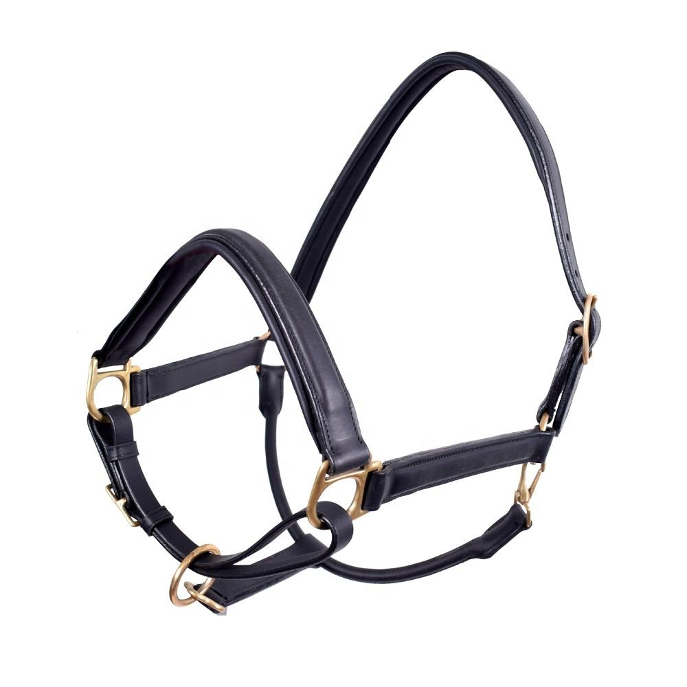 Horse Riding Premium Leather Halter