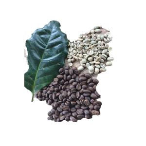 Premium Grade Arabica Coffee Bean Chiangrai Mountain from Thailand