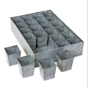 Galvanized Metal Seed Germination\Starting Tray