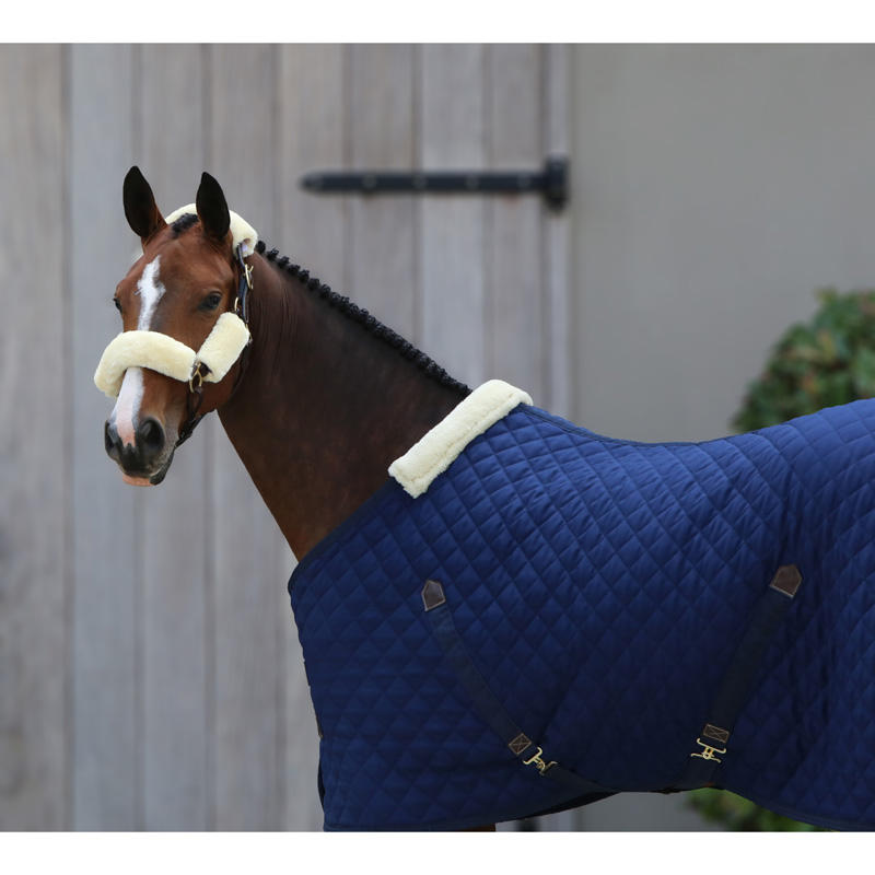 NEW Stable Horse Rugs fancy Turnout Horse Winter Rugs BEST High Quality Turnout Horse Winter Rugs