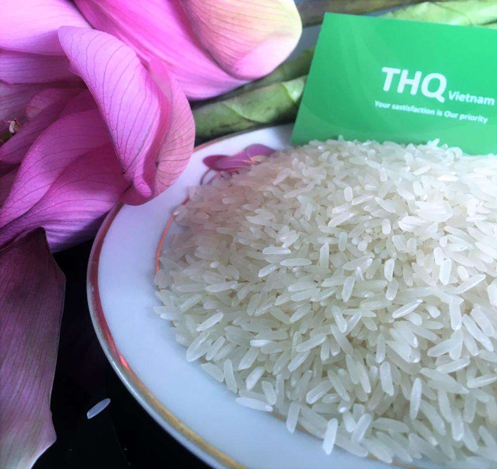 JASMINE RICE - LONG GRAIN WHITE RICE / ST24 - WITH REASONABLE PRICE AND QUOCK DELIVERY (Ms. Rose: +84 977 610 525)