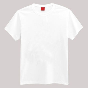 Cheap Price Custom Plain White T shirts for Men/Wemen