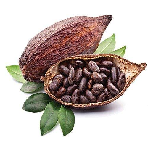 Cocoa Beans / Cacao Bean For Sale