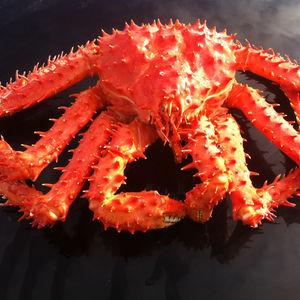 Alaska King Crab Alaska King Crab Suppliers And Manufacturers At Alibaba Com