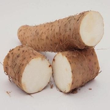 Factory Price Quality Elephant Yam