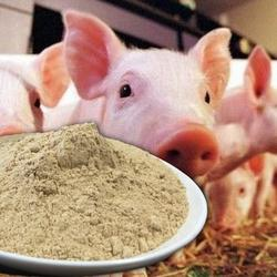 100% PROMOTE HEALTH & GROWTH PIG FEED/DIARY/ POULTRY/ ANIMAL ADDITIVES  Bacillus licheniformis Pig Feed.
