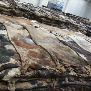 Quality Genuine Leather Dry And Wet Salted Donkey/Goat Skin /Wet Salted Cow Hides