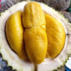 High Hill Fresh Durian D197