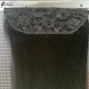 Hot Selling Top Quality Human Remy Double Drawn Halo Clip in Hair Extension