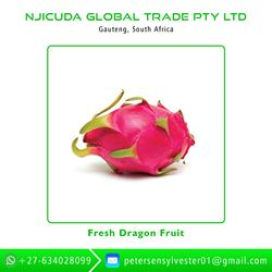 High Quality And Best Price Fresh Dragon Fruit