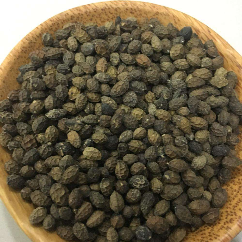 NATURAL DRIED PAPAYA SEEDS FOR HEALTH PAWPAW LEAF HEALTHY SEEDS FROM ASIA HIGH QUALITY HERBAL LEAF SEED