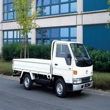 Toyota Demo Toyota Dyna Pickup truck for sale