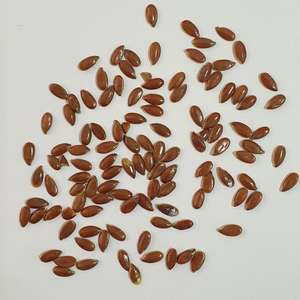 High quality linseed flaxseed, certified organic flax seeds