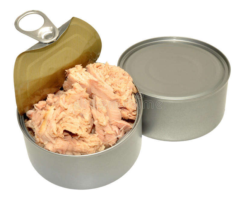 Vegetable Oil Canned Tuna For Sale