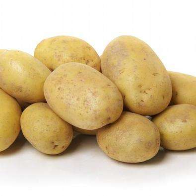 High Quality Fresh Potato From Pakistan White Potato / Red Potatoes