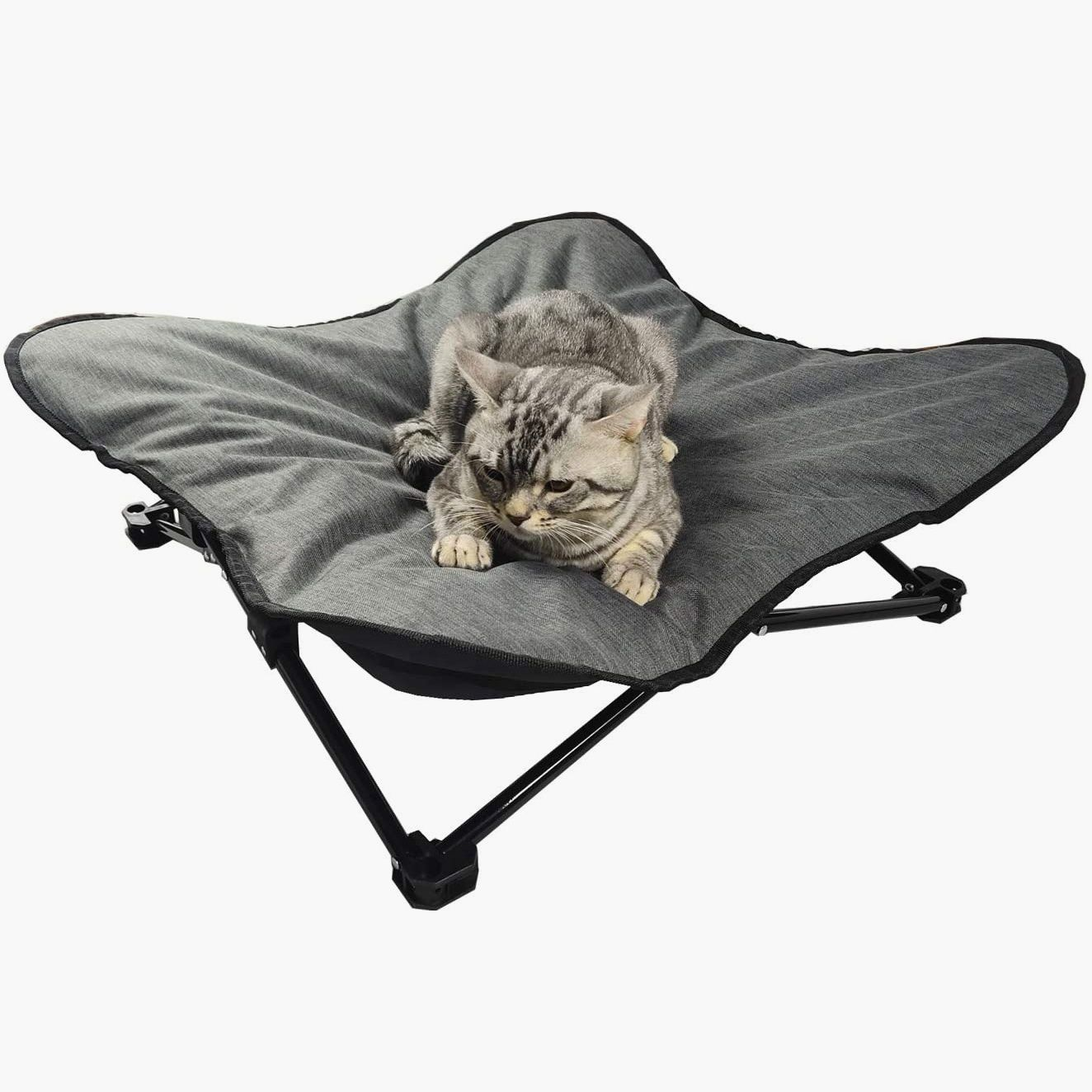 Elevated Folding Dog Bed Indoor Outdoor Pet Camping Raised Cot for Small Medium or Large Dogs