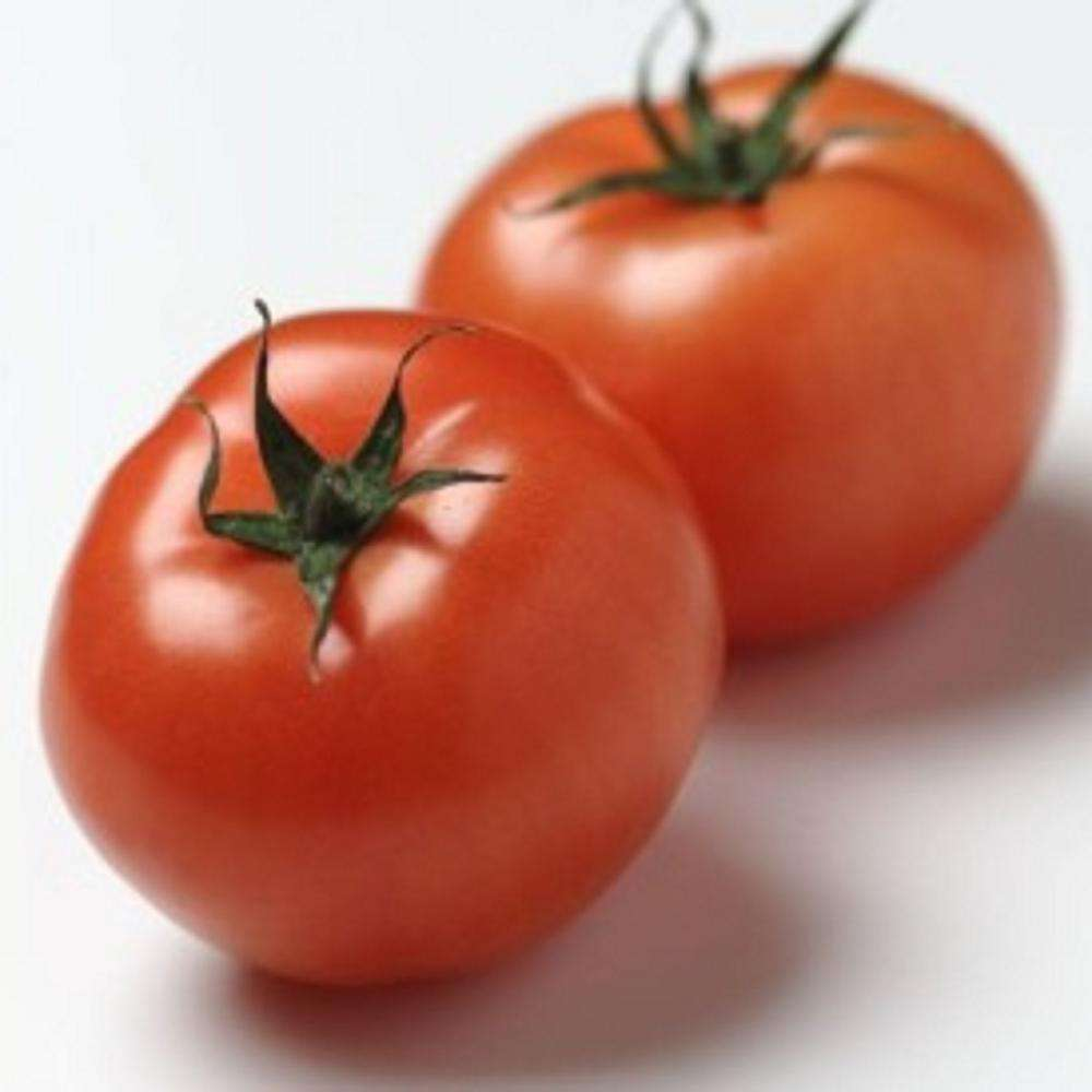 Red Common Tomatoes