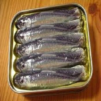 export canned food canned sardines & tuna canned fish