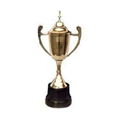 Metal Brass Cricket Trophies Cup