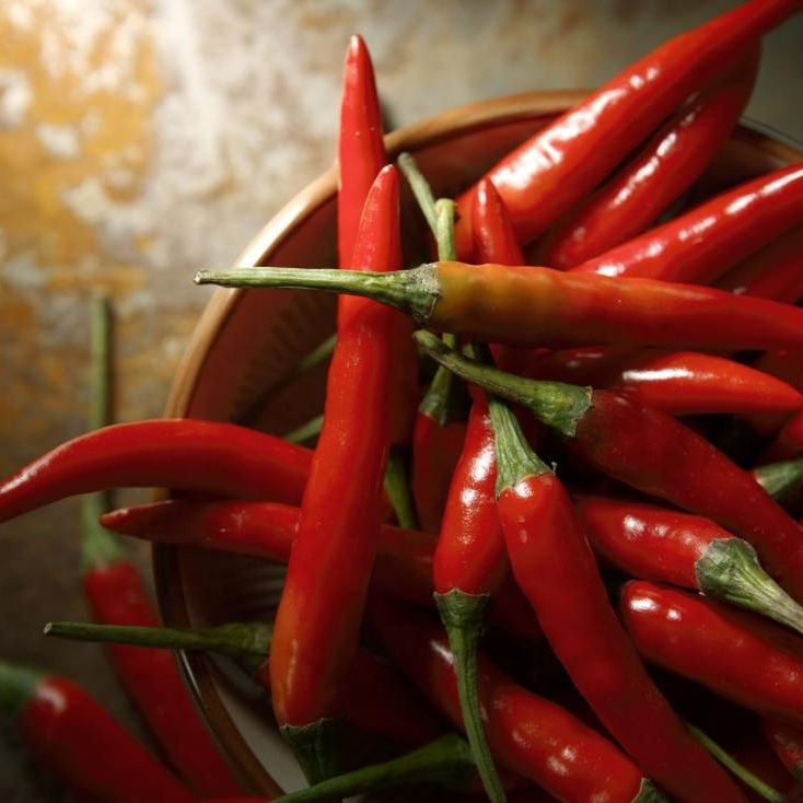 Fresh Red Chile Pepper