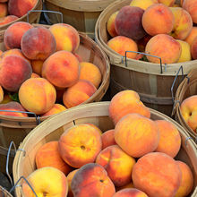 Fresh Peaches / Fresh Nectarines Class 1 (Cat 1) Premium Quality for sale