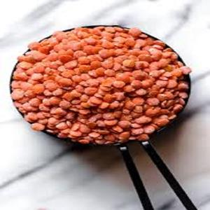 Excellent Price Red Lentils Available