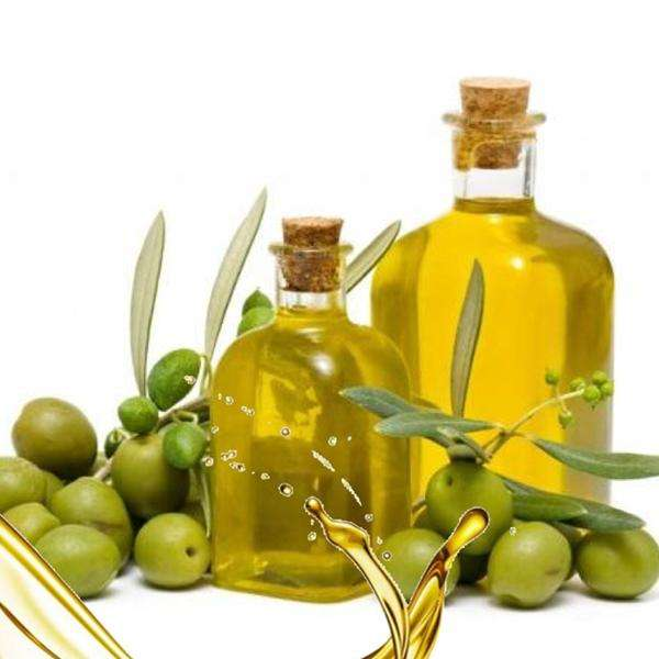 High quality Cold press Virgin olive oil with good price