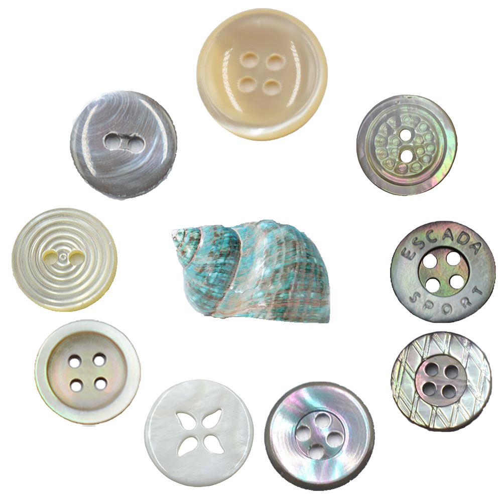 Kinds of best TonVan TV Customized Lasered High Quality Trocas Shell Button for Shirt