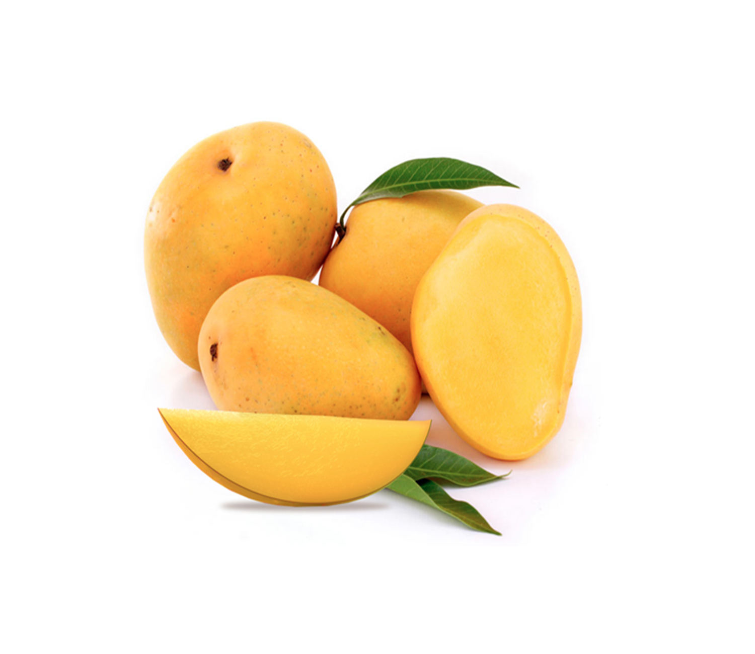 High quality fresh Alphonso Mango