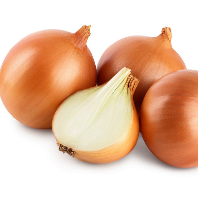 Fresh Onion In Bulk Cheap Red/Yellow Onions For Sale