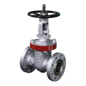 Strong Quality Cast Steel Gate Valve