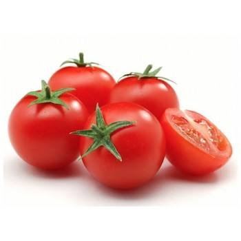 Cheap Price Natural Fresh Tomatoes in Stock