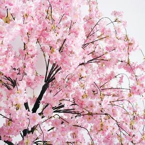 Outdoor party plastic cherry tree artificial cherry blossom tree for wedding decor