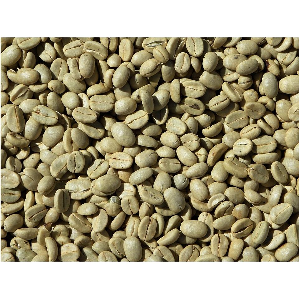 Coffee Bean Common Cultivation Type Robusta Variety Processing Type Green 90% Maturity