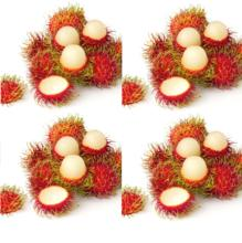 Thai Rambutan Fresh Fruits Organic Export High Quality Perfect Price Dinh Gia Company Vietnam