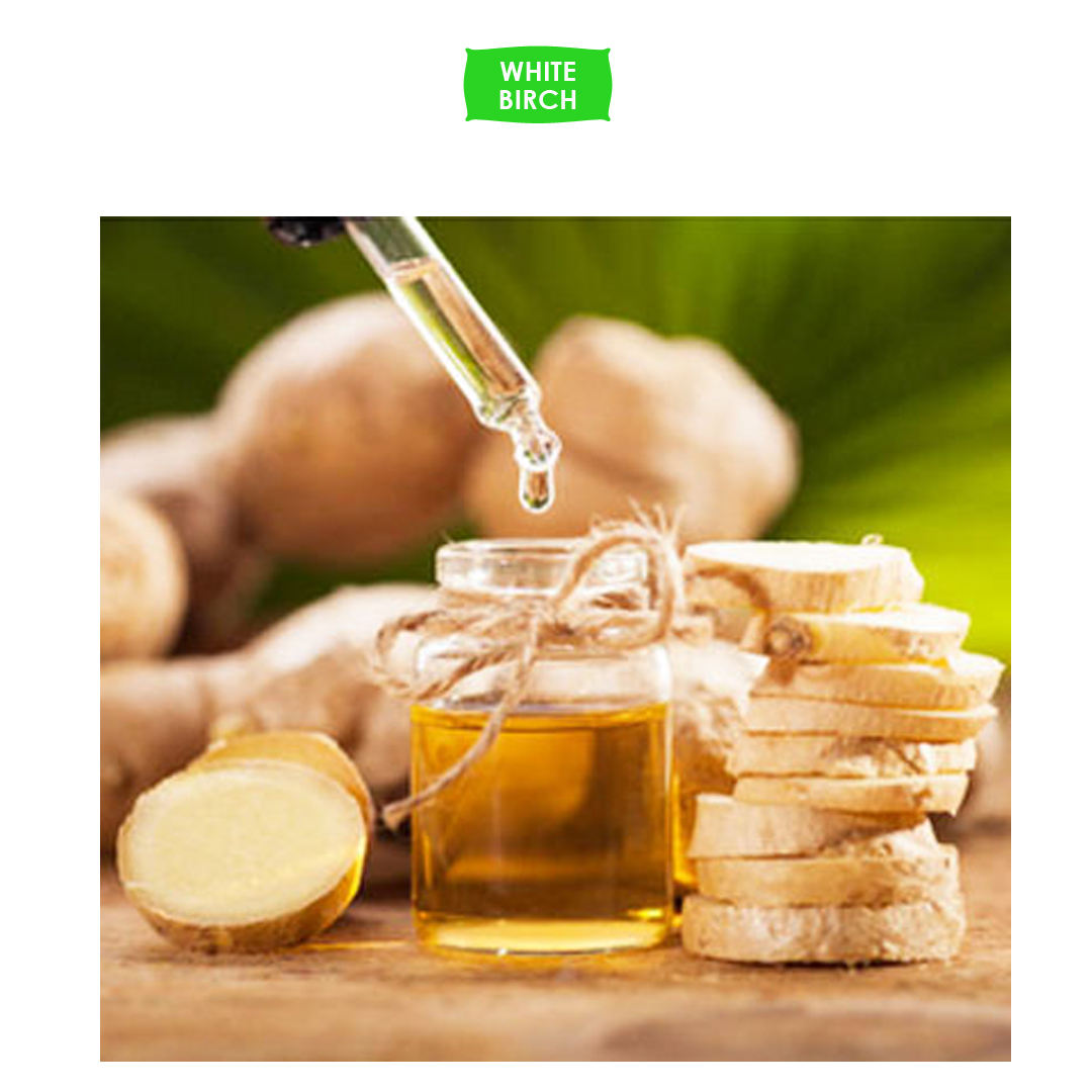 First Class Manufacturer of Ginger CO2 Extract Oil to Increase Metabolism