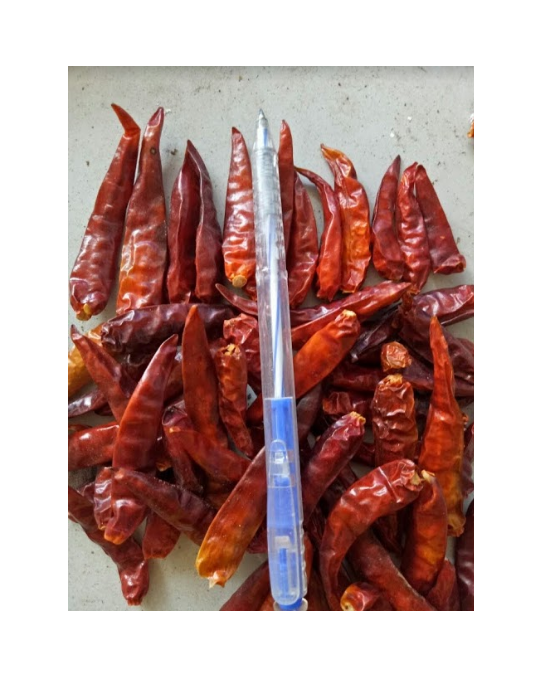 Snelle Levering Groothandel Droge <span class=keywords><strong>Peper</strong></span> Red Hot Chilli Productie In Vietnam