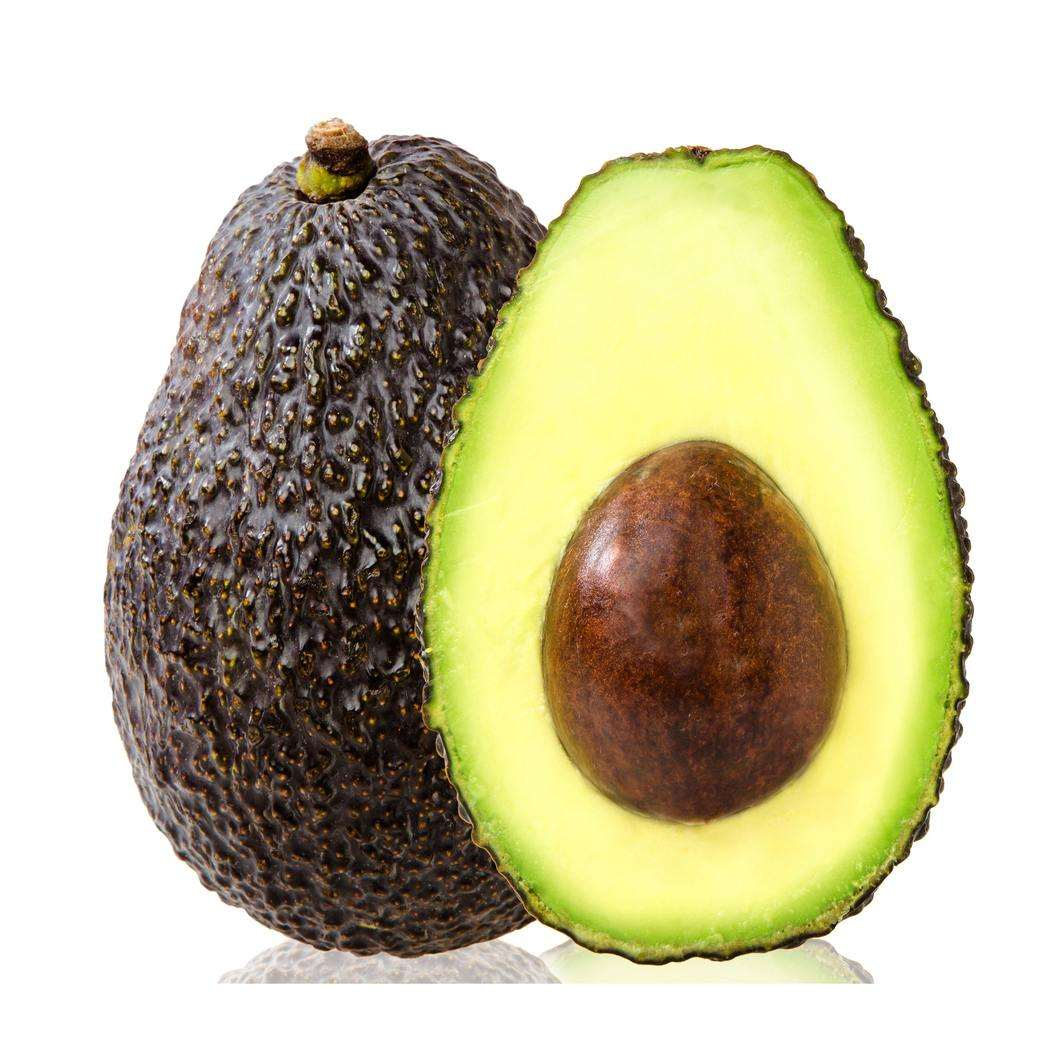 100% Fresh Avocado for Sale