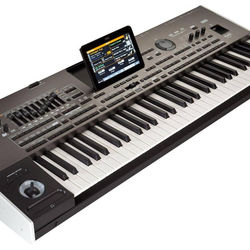Best Korg PA4X 61 PA4X61 Musikant Entertainer Workstation