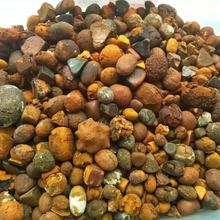 Whole Cattle and Cow Gallstone ready for sale