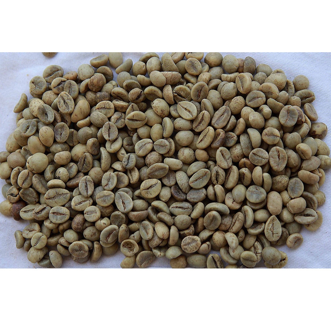 Vietnam Robusta Roasted Coffee Beans with delicious black coffee (Certification)