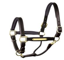 Wholesale Fancy Stitch breakaway Horse Leather Halter