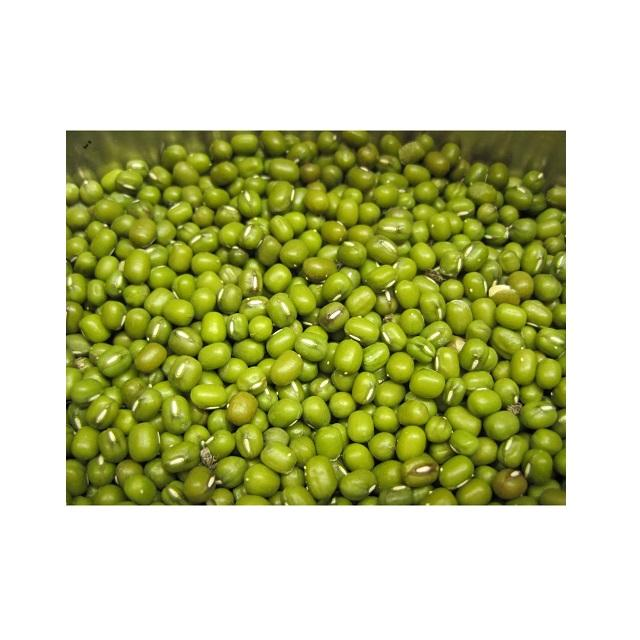 Fresh Mung Beans with HACCP Certificate - Dried Mung Beans Export to EU, USA, Japan, UAE, etc - Canned Vigna Beans