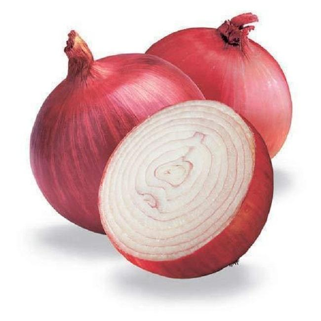 fresh red onion price per ton export