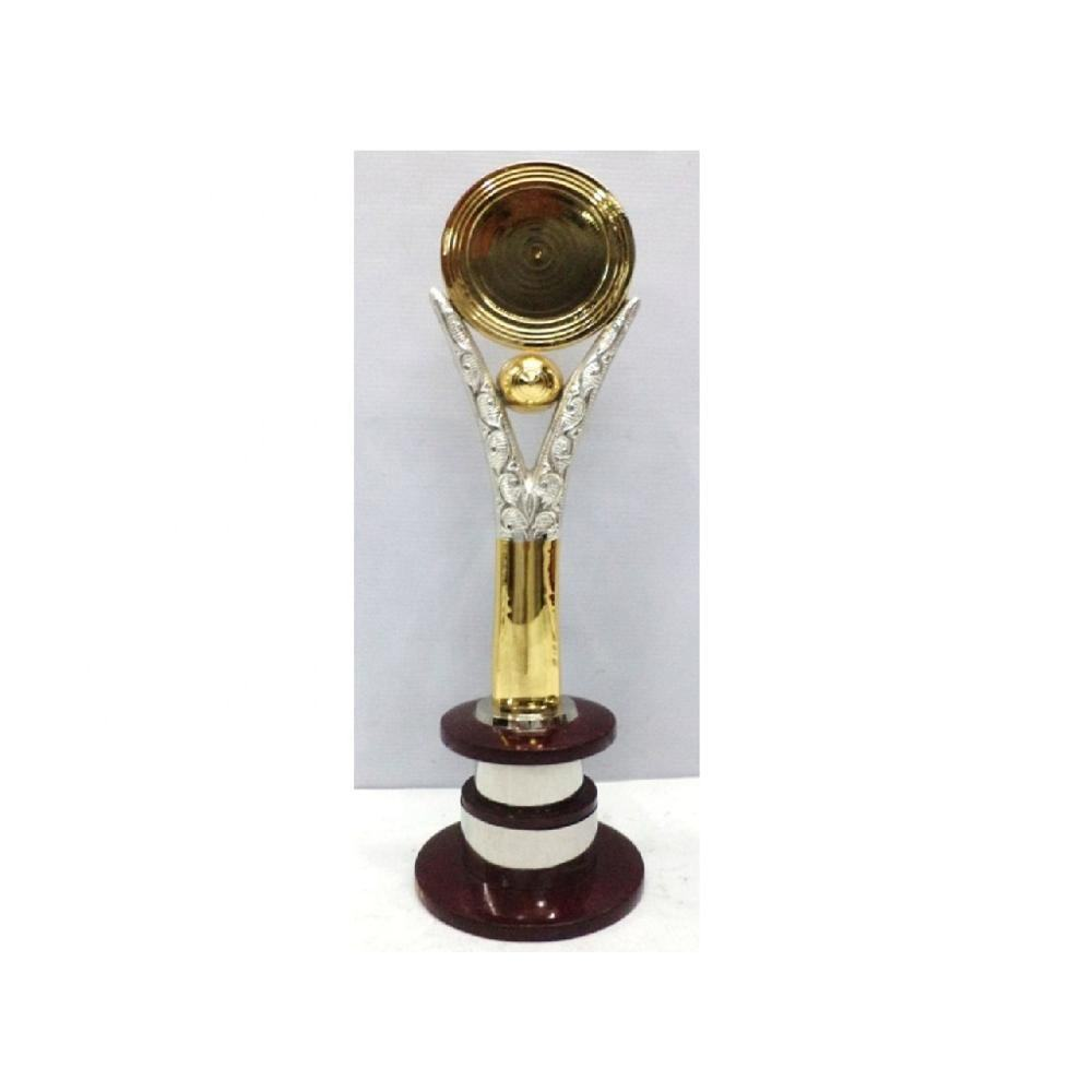 Wholesale Golden cricket trophies