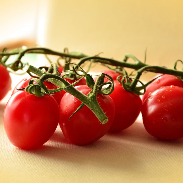Best Quality Korea Tomato Fresh Vegetable Mini Cherry Red Tomatoes MadeでKorea