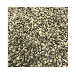 Factory Price Hemp Grain Wholesale From Manufacturer Natural 100% High Quality