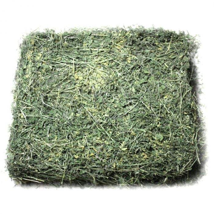 Alfafa Hay for Animal Feeding / Alfalfa Hay pallet Hot Selling