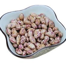 Light Speckled Red Kidney Beans - Turkey Origin