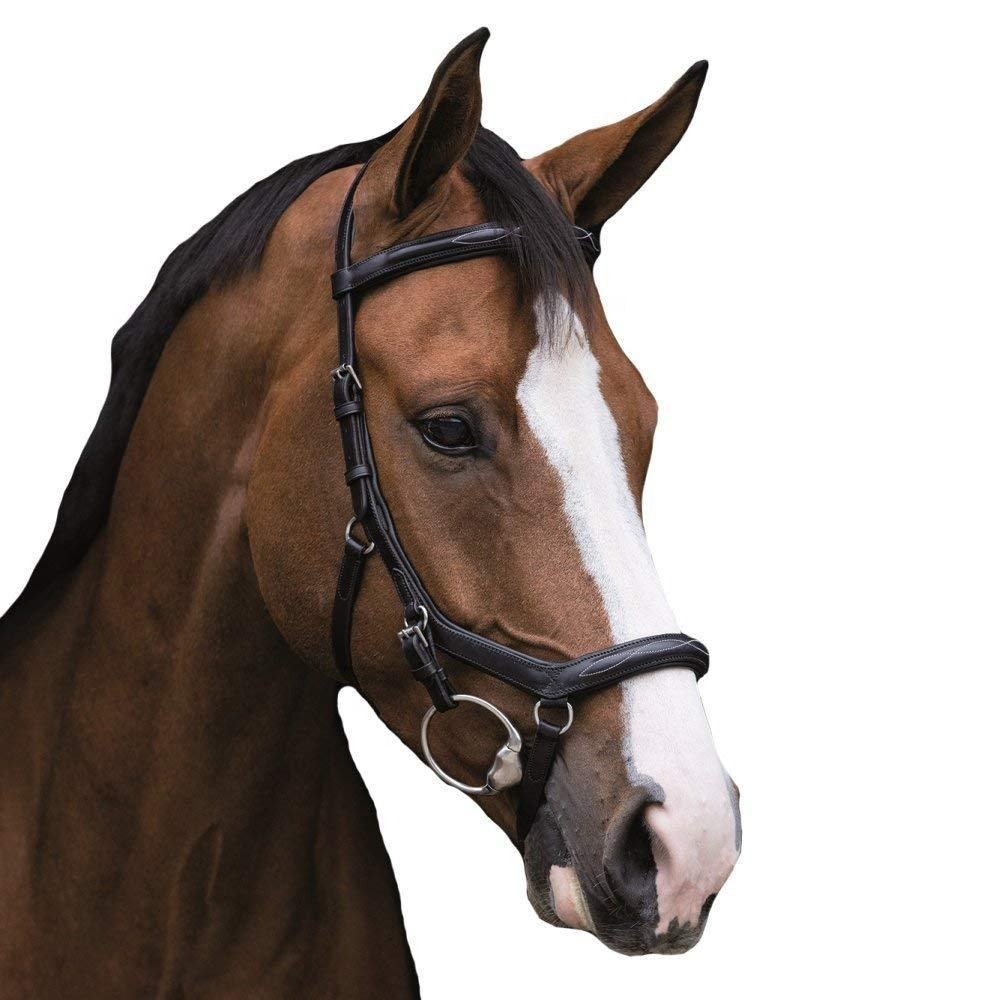 Rambo Micklem Deluxe Competition Horse Bridle Micklem Horse Bridles for sale all world